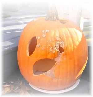 pumpkin 2005