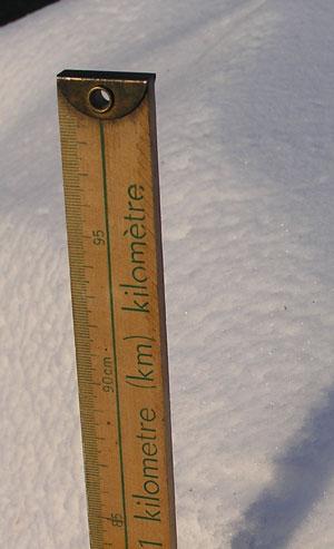 feb-20-95cm.jpg