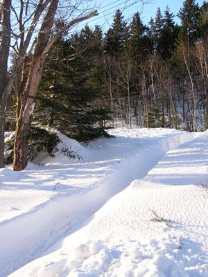 feb-20-path-2.jpg
