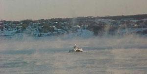 harbour-ferry-1.jpg