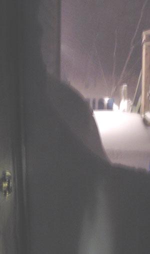 snow-back-door.jpg